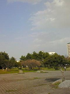 201003211538000.jpg